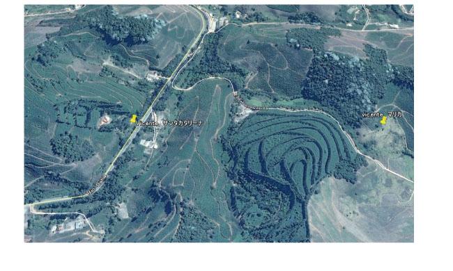 ブラジル・サンタカタリーナ農園説明3