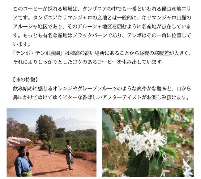 キリマンジャロ・テンボ・テンボ農園コーヒーの説明02
